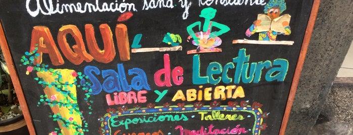 Planta Maestra is one of Locais salvos de Verónica.