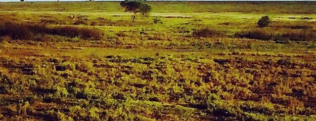 Sanctuary Kusini is one of M's ever-growing list of random stuff.
