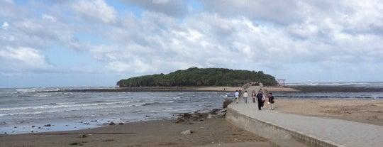 青島ビーチ is one of 日本の渚百選.