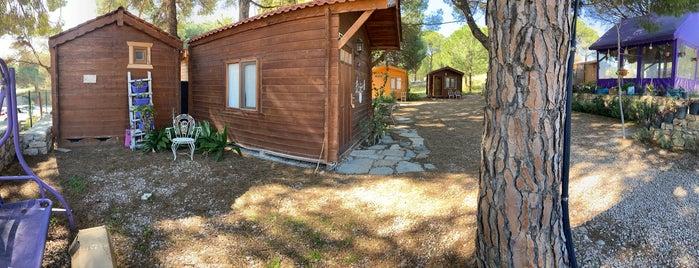 Mor Koyun Camp is one of Orte, die Emre gefallen.