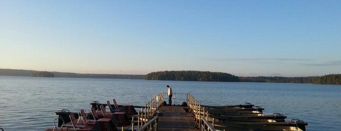 Пансионат «Озеро Зеркальное» is one of Активный отдых СПб.