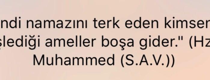 Gül Camii is one of Konya Meram Mescit ve Camileri.