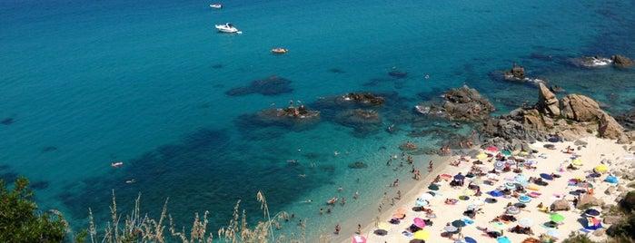 Paradiso del Sub is one of Lugares guardados de Matei.