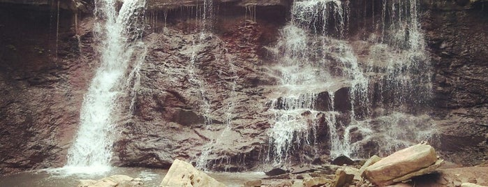 Chedoke Waterfalls is one of Daniel's Saved Places.