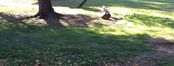 mary ave park is one of สถานที่ที่ Christina ถูกใจ.