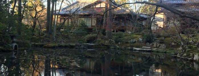天授庵 庭園 is one of Kyoto.