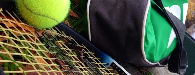Rose Park Tennis Courts is one of Lugares favoritos de Boriana.