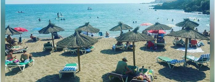 Platja de Sant Martí is one of Playas de España: Cataluña.