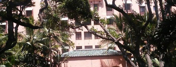 The Royal Hawaiian is one of Locais curtidos por Alfa.