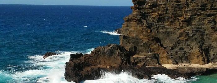 Hālona Blowhole Lookout is one of Locais curtidos por Alfa.