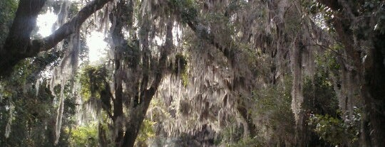 Savannah National Wildlife Refuge is one of Lieux sauvegardés par Joshua.