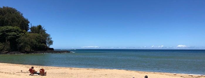 Kalihiwai Bay is one of Kauai.