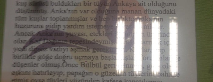 AnkaMola Lezzet Durağı is one of สถานที่ที่ Tuğrul ถูกใจ.