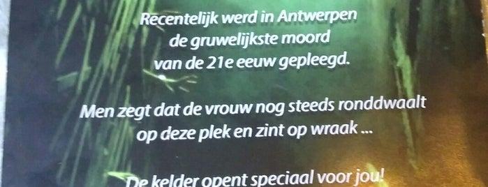 The Room Antwerp is one of 't Antwerpse.