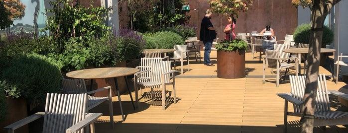 Terrace is one of Kensington Favorites.