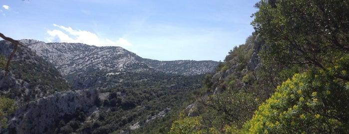Tiscali is one of Sardinia.