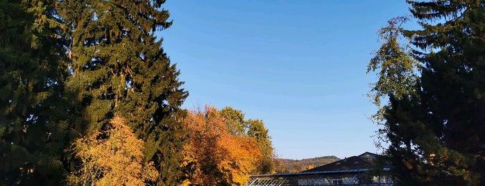 Botanischer Garten is one of HD Places-To-Be.