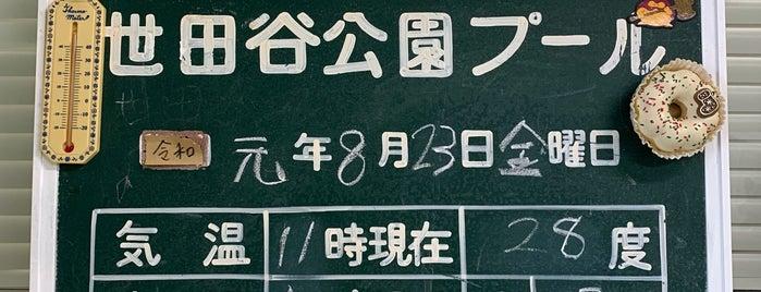 世田谷公園 屋外プール is one of 世田谷区のプール.
