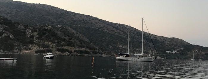 Kargı Restaurant & Green Beach is one of Locais curtidos por Demet.