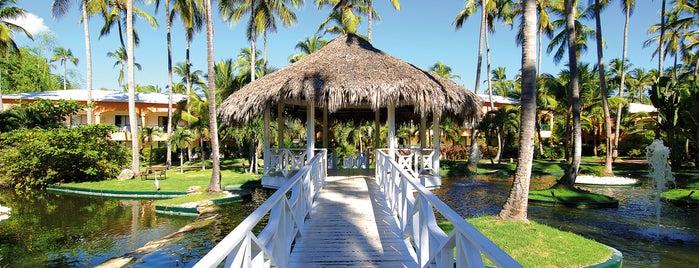 Barceló Dominican Beach is one of Gespeicherte Orte von Erika.