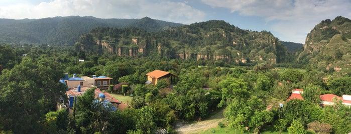 El Tecuan is one of Locais curtidos por MaryCarmen.