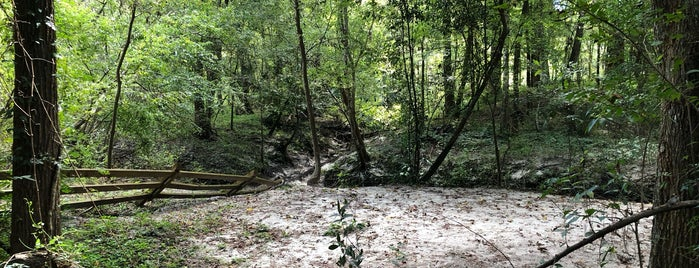 Loblolly Woods Nature Park is one of Orte, die Sarah gefallen.