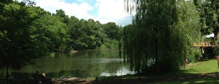 Van Cortlandt Park is one of NYC SUMMER 19.