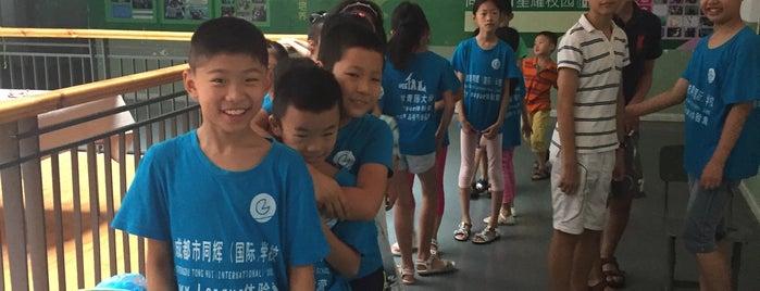 Chengdu Tong Hui International School   成都市同辉学校 is one of Lugares favoritos de Maggie.
