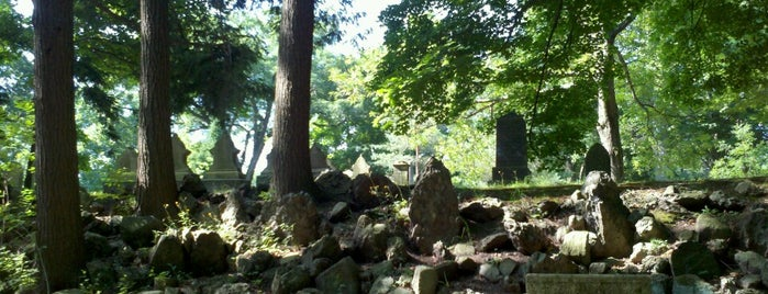 Forest Hills Cemetery is one of Carlさんのお気に入りスポット.