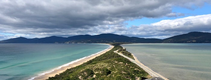 Bruny Island Neck Game Reserve is one of Go back to explore: Hobart.