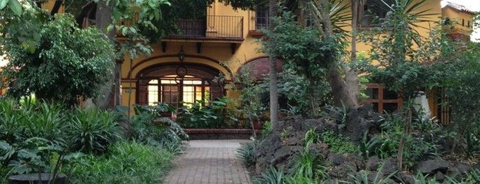 Casa de Cultura Jesús Reyes Heroles is one of Ciudad de México y alrededores.