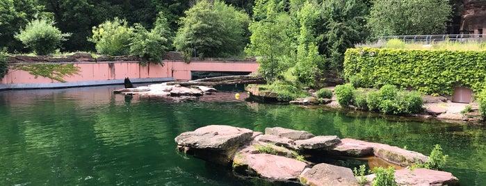 Aqua Park is one of Lieux qui ont plu à Nim.