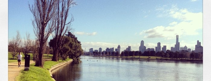 Albert Park is one of Tourism.