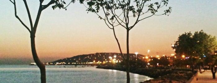 Kartal Sahili is one of Istanbul 2.