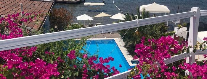 Poseidon Boutique Hotel & Yacht Club is one of Guclu : понравившиеся места.
