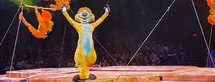 Festival of The Lion King is one of Guha : понравившиеся места.