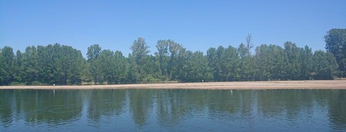 Bords de Loire is one of Roadtrip / Loire.