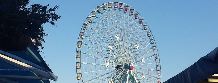 State Fair of Texas is one of Dallas FW Metroplex.