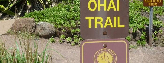 Ohai trail is one of Maui.