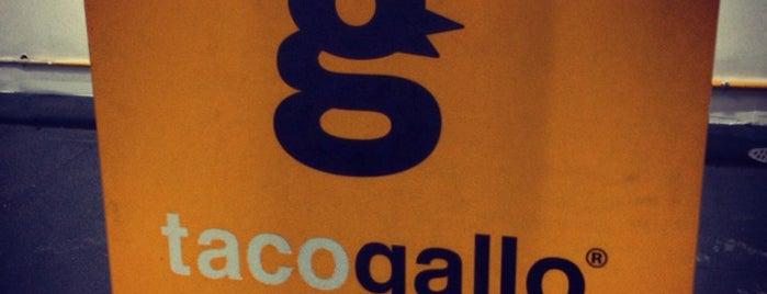 Taco Gallo Pedregal is one of สถานที่ที่บันทึกไว้ของ Aline.