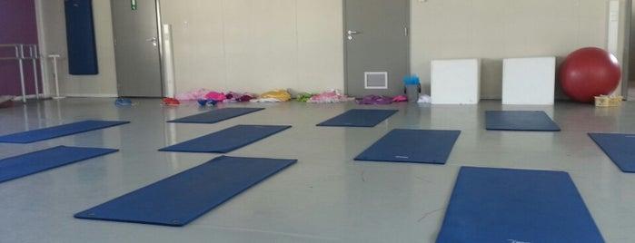 Alaeti Dance Center is one of สถานที่ที่ Vanessa ถูกใจ.