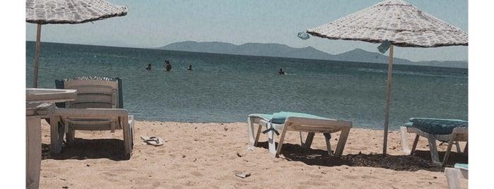 Enderin Beach is one of Mennan 님이 좋아한 장소.