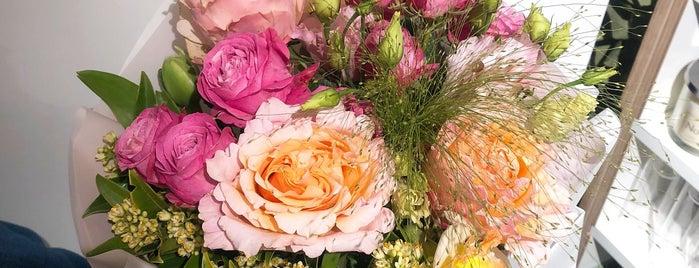 29 Flowers is one of Orte, die Olga gefallen.