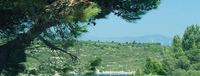 Urla deniz yildizi plaj is one of Tempat yang Disimpan Neslişah.