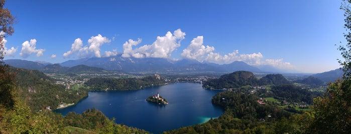 Blejsko Jezero / Lake Bled is one of Marinaさんのお気に入りスポット.