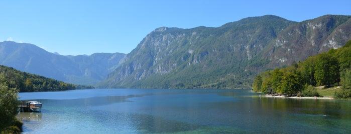 Bohinjsko jezero is one of Marinaさんのお気に入りスポット.