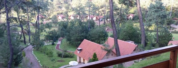 Hotel Bosque Escondido is one of Posti che sono piaciuti a Guillermo.