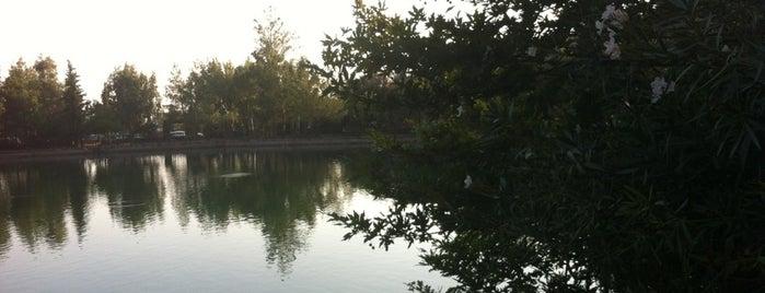 Zaros Lake is one of G&S Crete.