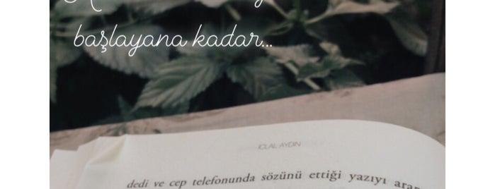 Dı Gayık is one of Mekan'ın Beğendiği Mekanlar.