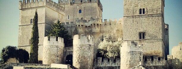 Castillo de Ampudia is one of Posti che sono piaciuti a Borja.